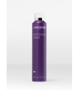 Molding Spray